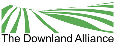 The Downland Teaching School Alliance